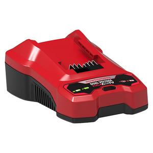Powerworks Ladegerät P2448C Dual Voltage