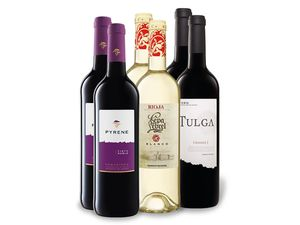6 x 0,75-l-Flasche Weinpaket Spanischer Frühling