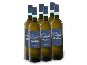 6 x 0,75-l-Flasche Weinpaket Falanghina del Sannio DOP trocken, Weißwein
