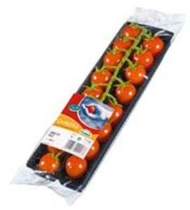 Cherrystar Tomaten aus Belgien
