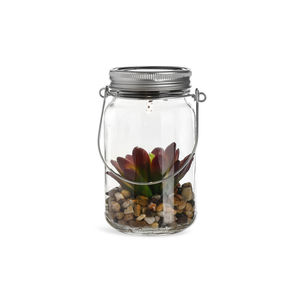 Solarleuchte Glas Pflanze, klar