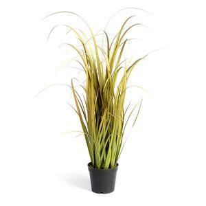 Grasbüschel in Topf, H:59cm, grün