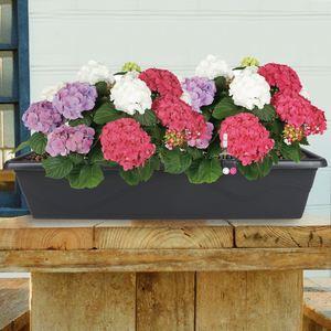 Blumenkasten Extra Line mit Bewässerungssystem 79x16,5x20,5cm Anthrazit