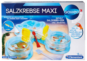 "Clementoni Galileo Experimentierkasten ""Salzkrebse"""