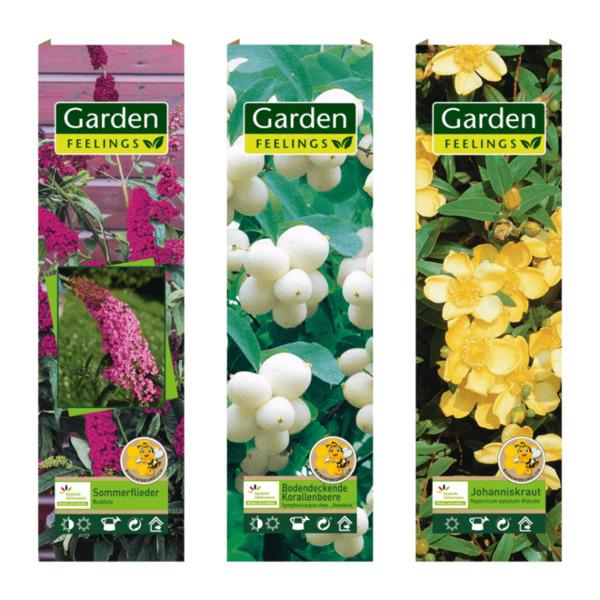 GARDEN FEELINGS     Bienenfreundliche(r) Zierstrauch / Kletterpflanze