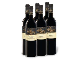 6 x 0,75-l-Flasche Weinpaket Negroamaro Salento IGP trocken, Rotwein