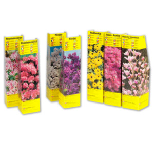 Verschiedene Blühsträucher