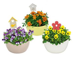 GARDENLINE®  Bepflanzte Frühlingsschale