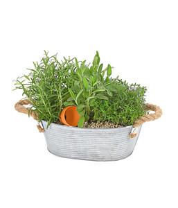 Bepflanzte Zinkjardiniere Kräuter
