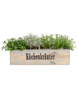 """Holzkiste """"Küchenkräuter"""", 4 Stück"""