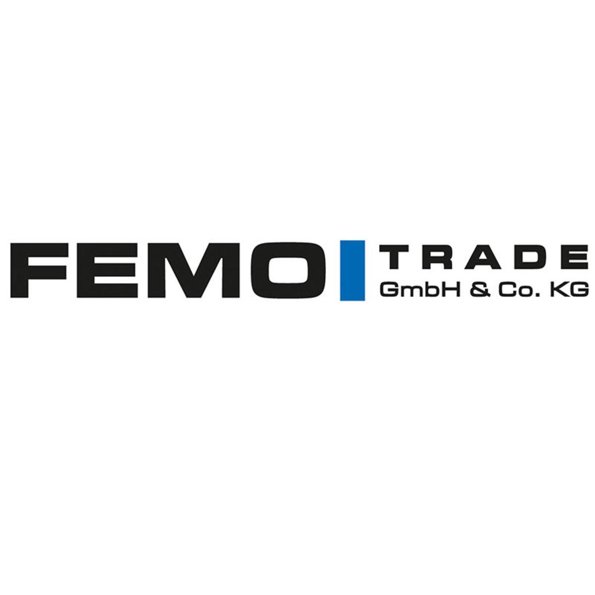 Bild 4 von FEMO TV-Sessel FM-531LM