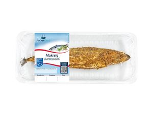 MSC Makrele