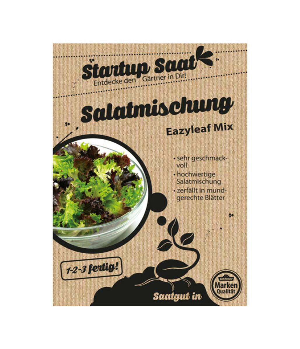 Bild 1 von Dehner Samen Salatmischung 'Eazyleaf Mix'