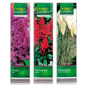 Finest Garden Kübelpflanzen Besonderheit