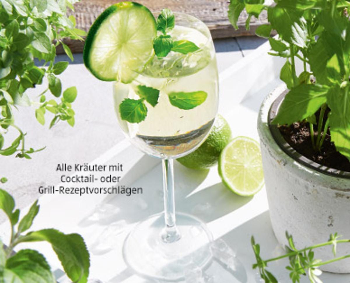 Bild 2 von Grill- und Cocktailkräuter