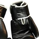 Bild 3 von Box Handschuhe