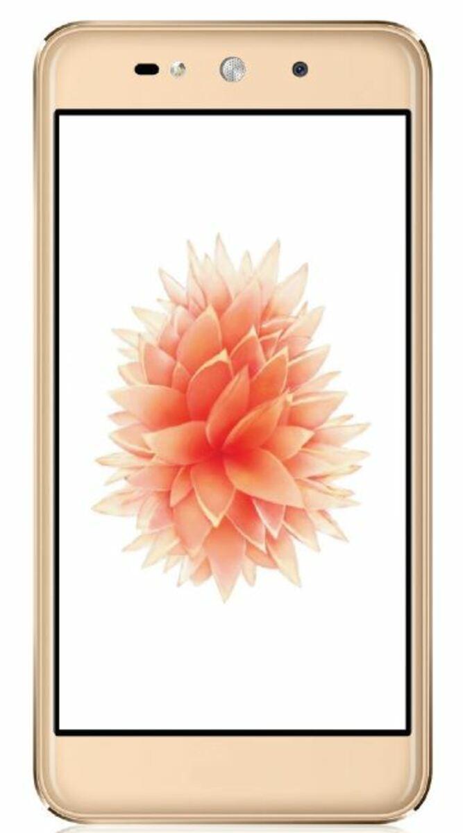 Bild 1 von Blaupunkt SL02 Smartphone in Gold