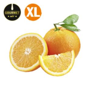 SpanienGourmet HIT Orangen