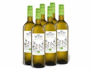 6 x 0,75-l-Flasche Weinpaket Caladelverde Bianco Terre di Chieti IGP, Vino Biologico, Weißwein