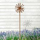 Bild 1 von Gartenstecker Allium in Rostbraun 100cm