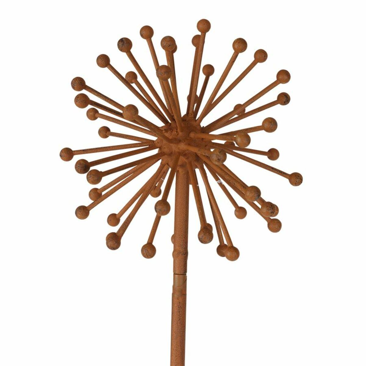 Bild 2 von Gartenstecker Allium in Rostbraun 100cm