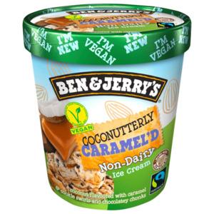 Ben & Jerry's Coconutterly Caramel'd Non-Dairy Eis 500ml