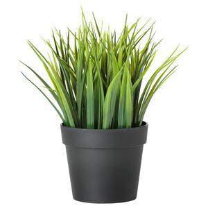 FEJKA                                Topfpflanze, künstlich, drinnen/draußen Gras, 9 cm