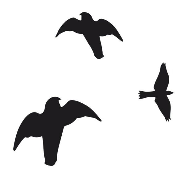Vogelschutz Aufkleber Wintergarten Schreck Warnvogel Greifvogel Fensterschutz V2