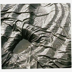 Oase -              Oase Teichfolie Alfafolie schwarz 1 mm x 6 m
