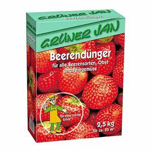 Grüner Jan Beerendünger 2,5kg