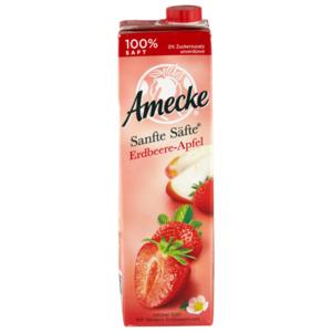 Sanfte Säfte Erdbeere-Apfel 1,0l EW