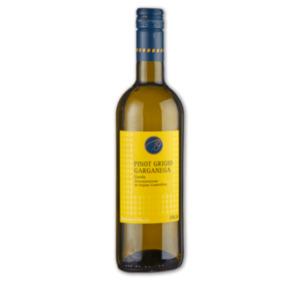 Italien STEFANO COLUCCI Pinot Grigio Garganega Garda DOC