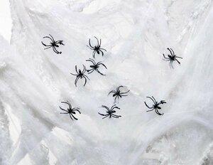 Riesen Spinnennetz
