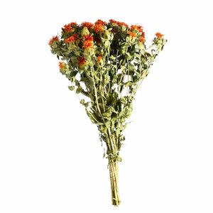 Blumenbündel Carthamus, L:60cm, orange