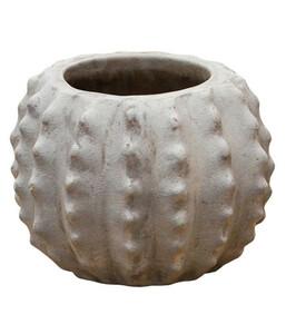 Dehner Terrakotta-Topf Kaktus, ca. Ø26/H19 cm, m-terra