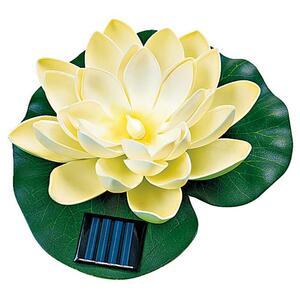 IDEENWELT Solar-Seerose creme