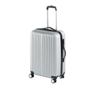 Koffer in silber (Größe M)