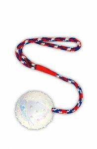 Hundespielzeug Naturgummiball