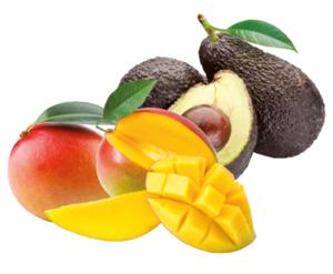 "Mango ""Kent/Keitt"