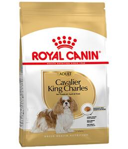 Royal Canin Trockenfutter Cavalier King Charles Adult