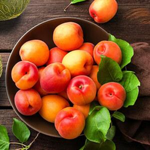 """Spanien Aprikosen """"Sunsweet""""oder Aprikosen rot """"Fuego"""", Kennzeichnung siehe Etikett, jede 350-g-Schale"""