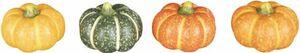 Kürbis - aus Terrakotta - 5,5 x 5,5 x 5 - 1 Stück