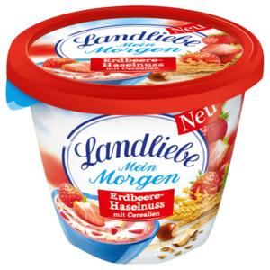 Landliebe Mein Morgen Erdbeere-Haselnuss mit Cerealien 250g