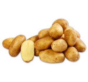 Speisefrühkartoffeln