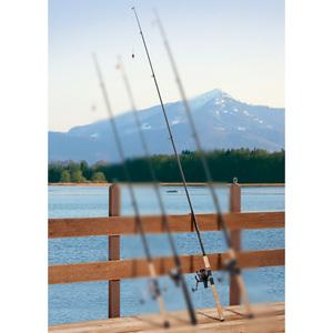 AllGear Fishing Raubfisch-Angel-Set