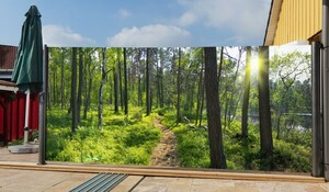 Westerholt Seitenmarkise mit Fotodruck Wald 1,6x3m, links