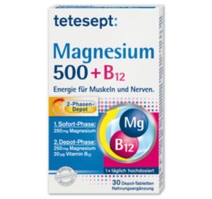 TETESEPT Magnesium 500 + B12