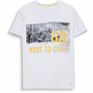 Esprit Herren Print-T-Shirt