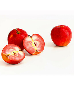 Rotfleischiger Apfel 'Baya Marisa'