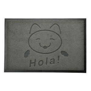 acerto® Premium Fußmatte Schmutzfangmatte CAT HOLA grau 40x60cm